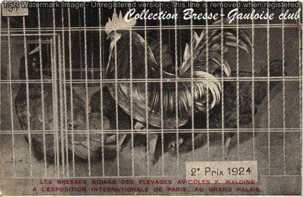 2e prix paris 1924 b